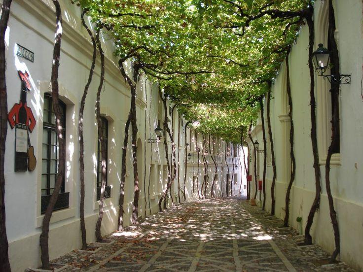 Уютные городские улицы со всего мира