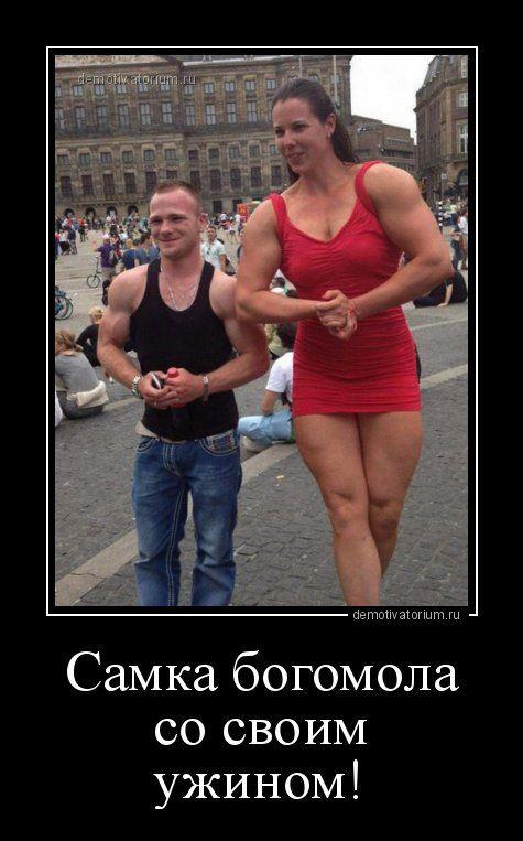 Представляем вам очередной сборник прикольных демотиваторов для поддержания рабочего настроения! Всем удачного дня!                      Источник:http://www.bugaga.ru/jokes/1146752375-novye-demotivat…