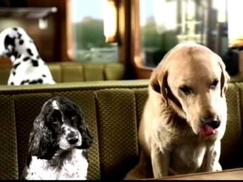 Bakers Dog Food Advert - YouTube