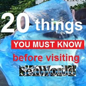 Best tips on net when visiting Sea World Orlando, FL