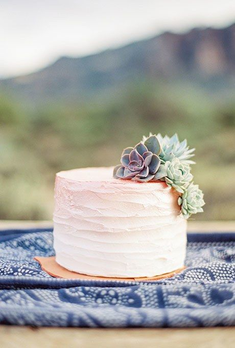 A one-tier ombré frosted wedding cake decorated with fresh succulents, created by Sissy's Sweet Cakes.