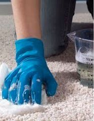 Carpet stain remover! Baking soda, white vinegar, liquid dishwashing detergent, 3% hydrogen