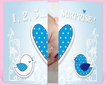 Faire-part naissance réf. N70110 chez monFairePart.com
