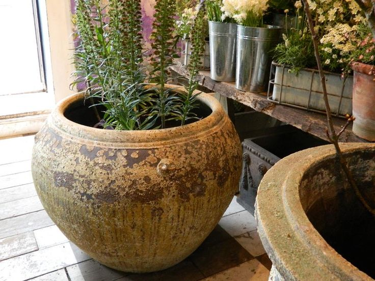 Kind of Large Ceramic Planters - http://jhre.wildeastbistro.com/kind-of-large-ceramic-planters/ : #Outdoor Large ceramic planters – Chinese vases, the popularity of floral arrangement that goes back thousands of years has led to the popularity of the great vessels in China. Many who survive are considered valuable works of art. Basic styles include glass vase and jar yen-yen, who have a flared...