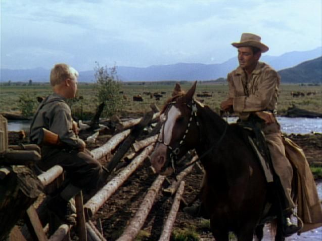 Photo Results: When I say HORSE, you say... | Via Margutta 51: Classic Movie Reviews