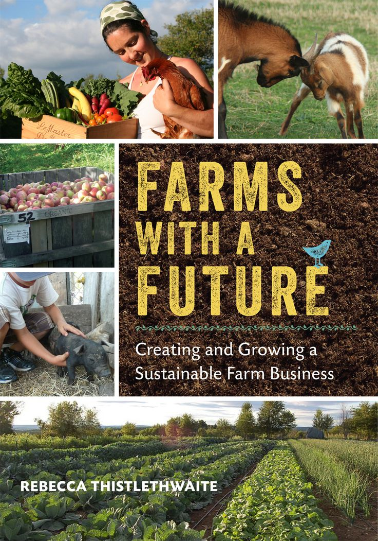 Farms with a Future: Creating and Growing a Sustainable Farm Business. What is a farm with a future? What will make it sustainable and resilient? And what key qualities and skills does a farmer need in today's climate to be successful? Rebecca Thistlethwaite addresses these questions in this book for anyone aspiring to get into small to mid-scale market farming, or who wants to make their existing farm more dynamic, profitable, and, above all, sustainable.