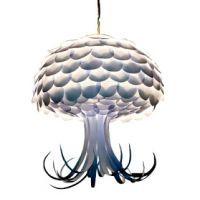 Jellyfish Short Tentacles