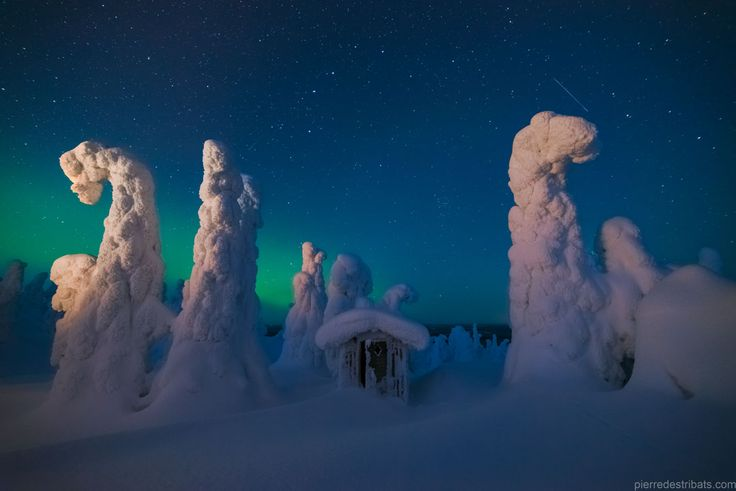 Sentinels of a Northern Sky  Image Credit & Copyright: Pierre Destribats Explanation: Who guards the north? The featured picture was taken last March in Finnish Lapland where weather can include sub-freezing temperatures and driving snow. Surreal landscapes sometimes result, where white alien-looking sentinels seem to patrol the landscape.