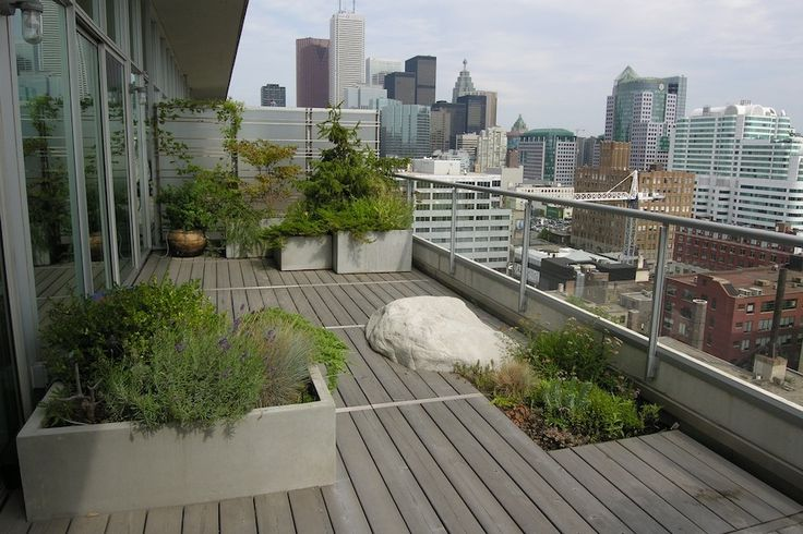 Top Floor Garden Roof Terraces Rooftop Patio