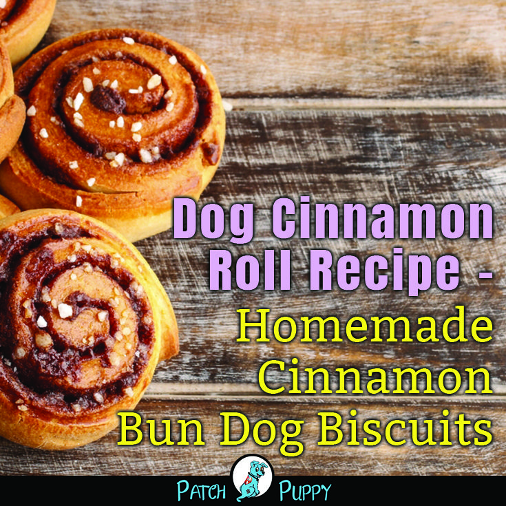 Homemade Cinnamon Bun Dog Biscuits Dog Biscuits Homemade Dog