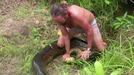 Sébastien Bascoulès capture un anaconda géant en Guyane