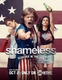 Shameless 7   Watch Movies Online
