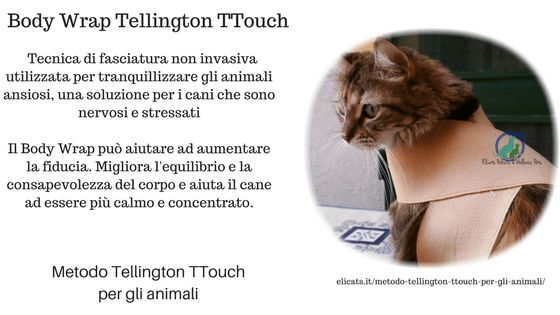 Metodo Tellington TTouch per gli animali | Elicats Holistic Pets