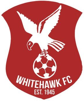 Whitehawk F.C. ~ 1945 _______________________________ The Enclosed Ground ~ Brighton ~ England