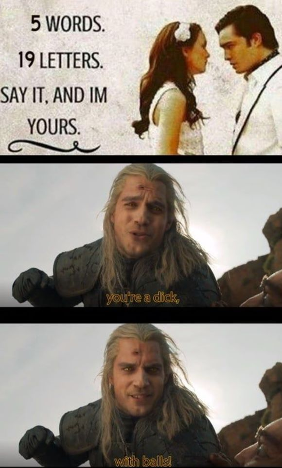 Pin By Tzlil A Salah On Witcher The Witcher Funny Memes Funniest Hilarious Memes