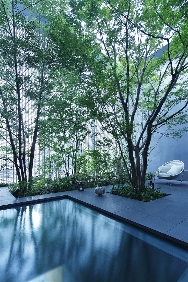 Cohen residence entry courtyard modern landscape houston by rh - Cohen Residence By Rh Factor Landscape Design See More Optical Glass House