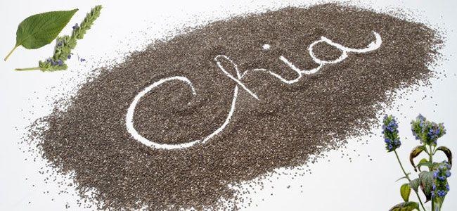 Σπόροι chia - Ιδιότητες και χρήσεις ...Γιατί είναι η αγαπημένη super-τροφή των star?