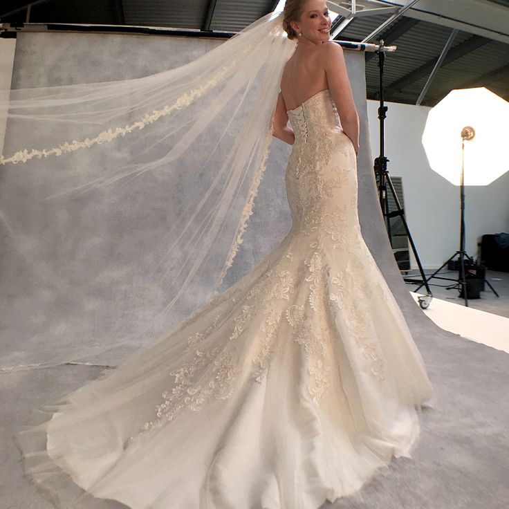 The beautiful new gown 'Cassandra' by Anna Sorrano ✨ Fall in love all over again with this strapless fishtail wedding dress✨ Is this your dream wedding dress? ✨