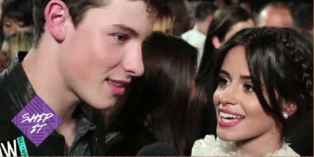 Shawn Mendes and Camila Cabello confirm they're NOT dating