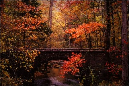 Blanchard Springs Bridge #Arkansas