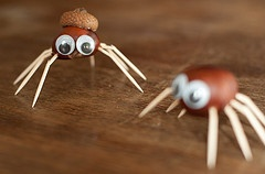 Spinnen knutselen van kastanjes.