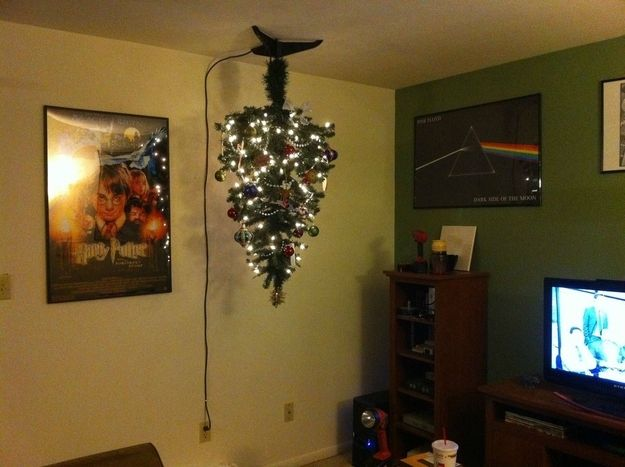 24 Best Cat Proofing The Christmas Tree Images On Pinterest