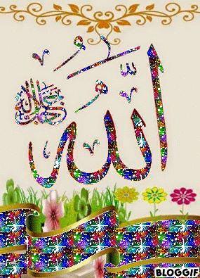 DesertRose,;,Allah,;, WhatsApp, Facebook and Calls.. https://www.bibispy.net/,;,