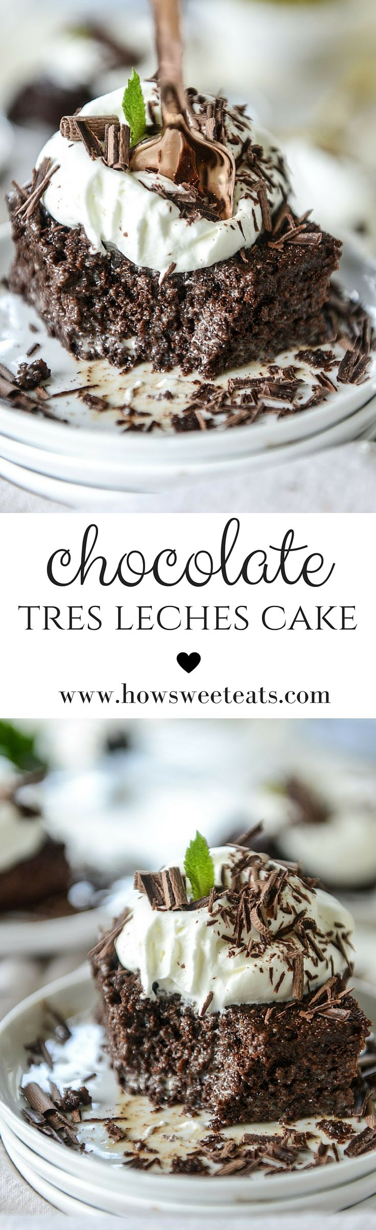 Best 25+ Chocolate tres leches cake ideas only on Pinterest | Tres ...