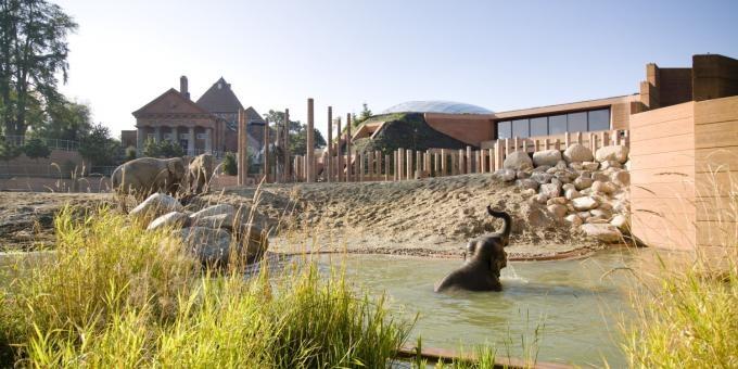 Elephant House in Denmark