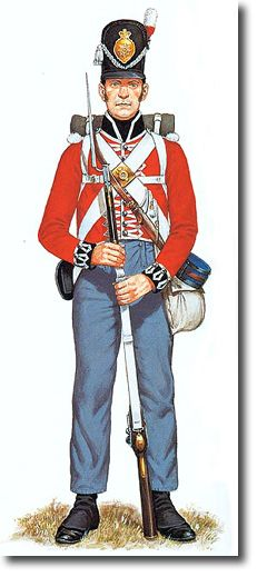 The First Regiment of Foot Guards Private, Centre Coy - 1815.