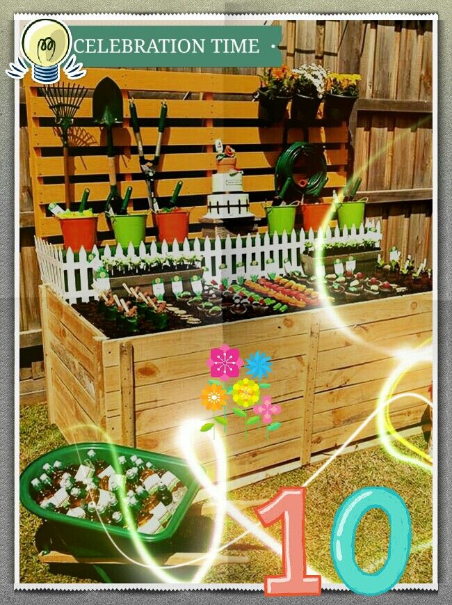 It's our 10th Anniversary. Have your garden done by African Gardens Landscaping and Irrigation and receive your free gift.