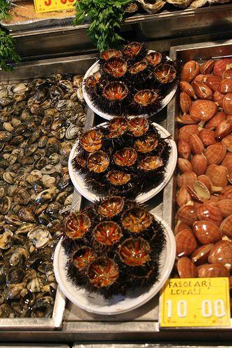 Fish Market: Catania, Sicily