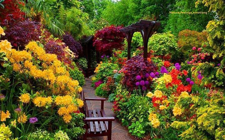 Hermosos jardines jardines hermosos pinterest for Jardines bellos fotos
