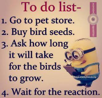 http://www.jokesoftheday.net/jokes-archive/2015/12/01/Funny-to-do-list.jpg.330.jpg