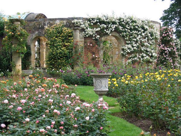 True beauty...: Rose Gardens, Google Search, Hever Rose, Flower Gardens, Beast S Gardens, Roses Garden, Flowers Garden
