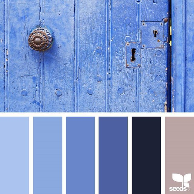 today's inspiration image for { a door hues } is by @rotblaugelb ... thank you, Julia, for another amazing #SeedsColor image share!