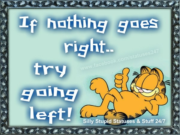 1000 Images About Garfield On Pinterest