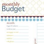 An amazing list with tons of links to thousands of printables to get you organized. This one in particular has  a TON of EDITABLE Budgeting printables and very nice ones too! Via the http://tipnut.com/budget-worksheets/# and a host of others.
