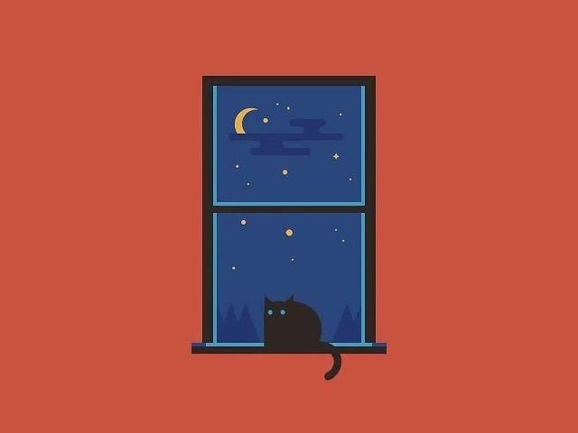 Cat Dreamer / Мечтаешь у Окна ?