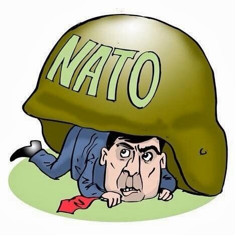 ПроХолод: Страх НАТО