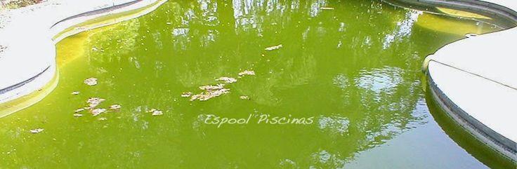 Solucionamos problemas de agua turbia en tu piscina. Espool Piscinas. info@espoolpiscinas.com