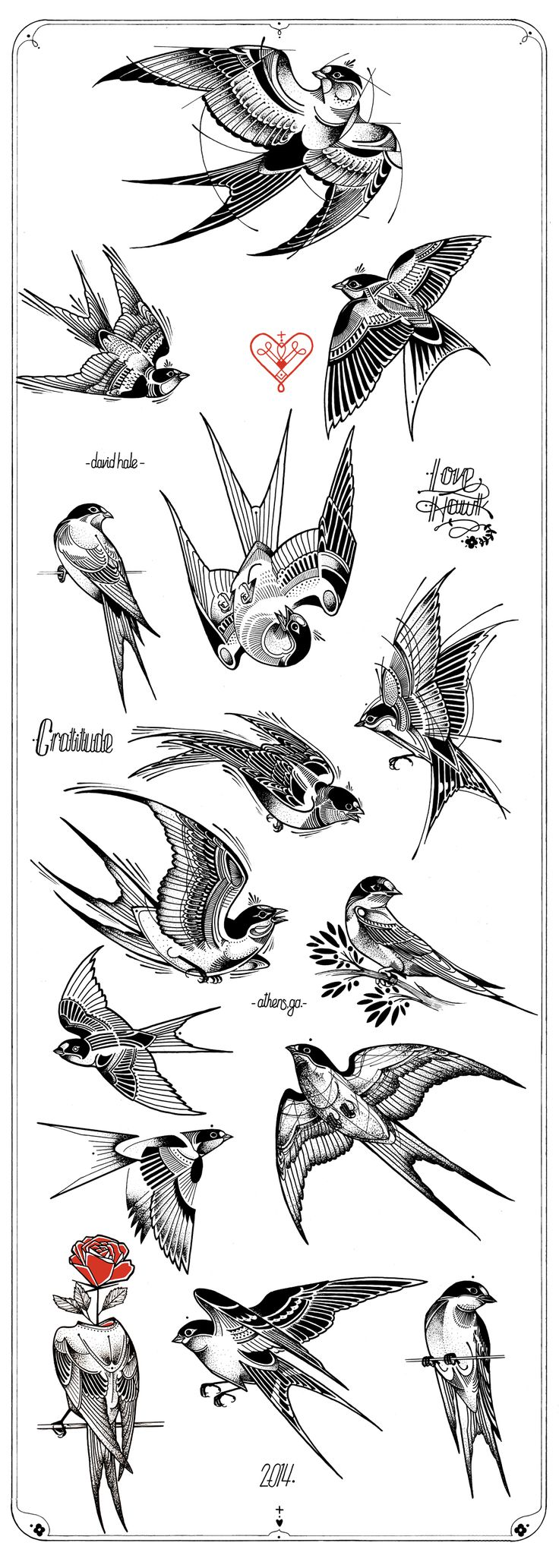 estampa passarinho mandala
