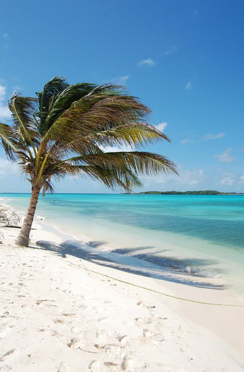 Los Roques, Venezuela. Tropical vacation. Tropical water. Tropical beaches.