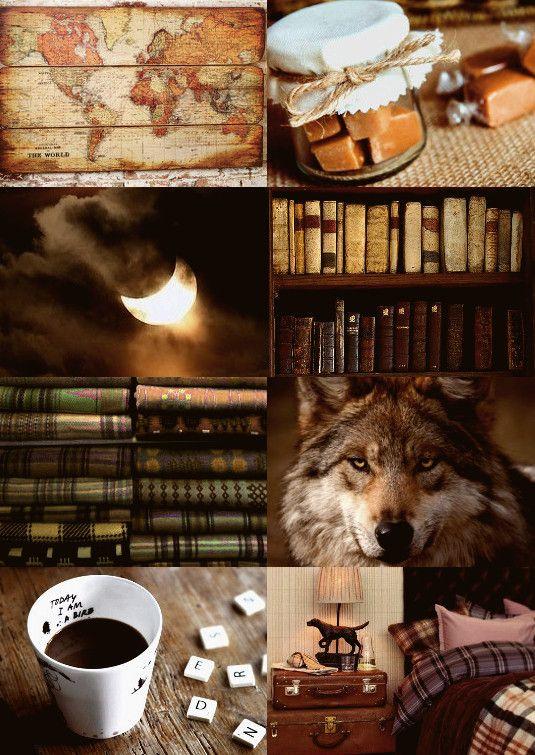 leveeohsa: Harry Potter Character Aesthetics- Remus Lupin ...