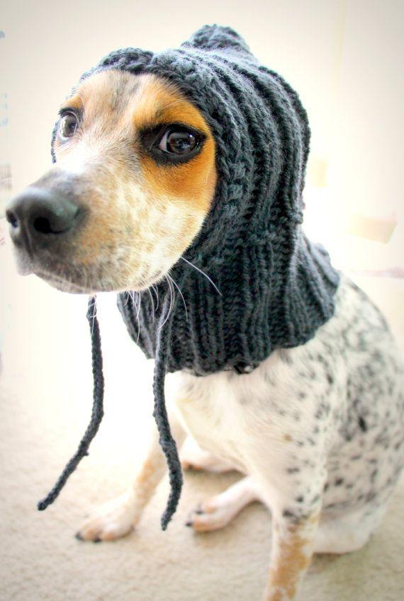 Dog Cowl Knitting Pattern : Custom knit dog hat, dog hoodie, pet scarf, pet clothes, dog cowl Hats, Pet...