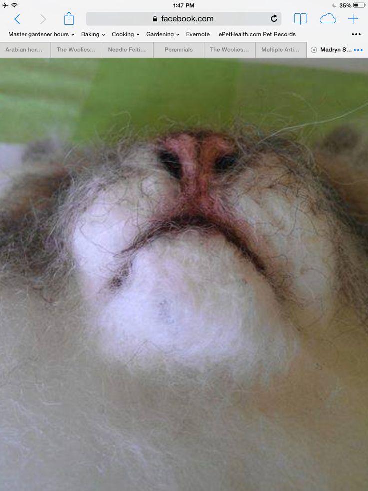 1640 Best Images About Needlefelt Animals On Pinterest