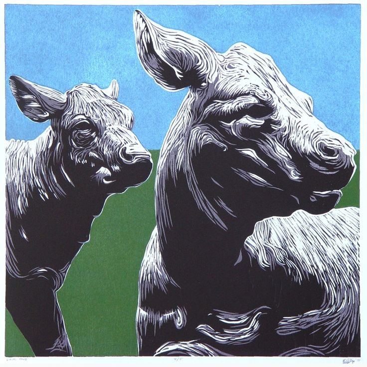 Best images about printmaking animals creatures on