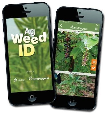 Identifying Weeds With the Click of A Button