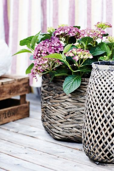 .: Beautiful Baskets, Balcony Gardening, Flower Baskets, Garden Basket, Outdoor, Gardens, Flowers, Hydrangeas