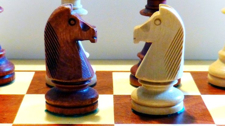Beginners guide to chess how to play chess chess